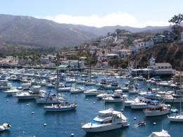 Down LA River Catalina: Avalon from The Casino