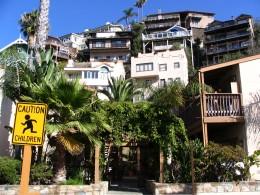 Down LA River Catalina: Avalon hillside
