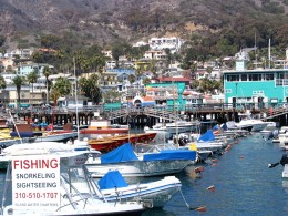 Down LA River Catalina: fishing snorkeling sightseeing