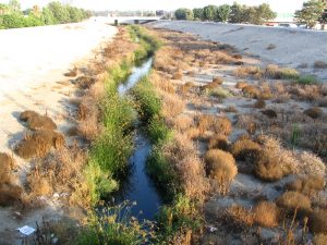 Down LA River Part 10: Compton Creek