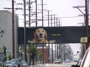 Down LA River Part 5: Dogs Rule