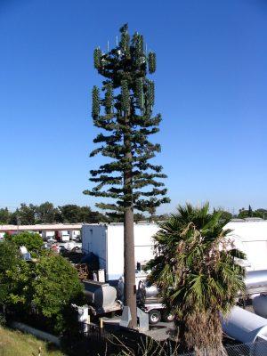 Down LA River Part 8: cellphone tower