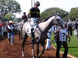 Santa Anita 2008: viewing horses