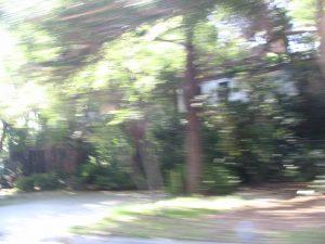 Sunset Boulevard - Part-Fifteen: driving through Bel-Air