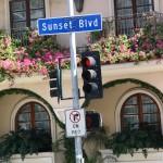 Sunset Boulevard – Part Ten: The Strip: Sunset Blvd sign