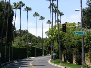 Sunset Boulevard - Part Twelve: Garbage Cans of Beverly Hills: side street