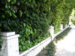 Sunset Boulevard - Part Twelve: Garbage Cans of Beverly Hills: wall 10