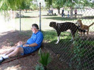 Up LA River Part 12: John Varley fence dogs
