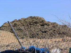 Up LA River Part 12: pile of stink