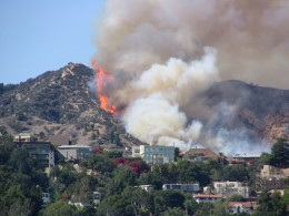 Up LA River Part 6: Griffith Park fire 1