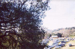 Neverland Ranch parking lot 2