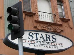 Stars on Vine