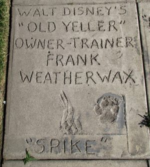 Burbank Animal Shelter: Old Yeller
