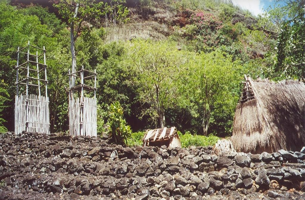 Hawaiian Temple 3