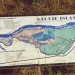 Welcome to Sauvie Island