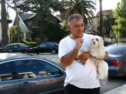 Walking dogs in LA 2