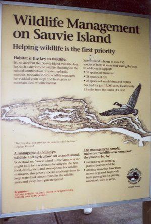 Wildlife Management on Sauvie Island
