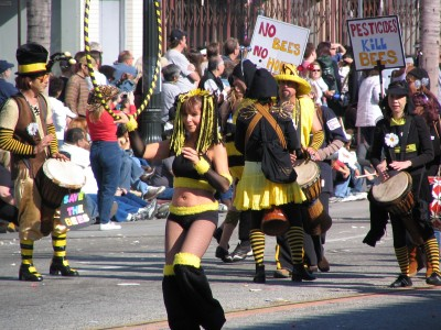 2008 Doo-Dah Parade: Pesticides Kill Bees