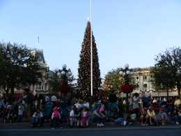 Disneyland and California Adventure Part 1: Christmas Tree