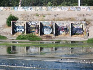 Down LA River Part 7: graffiti and wading birds