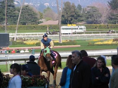 Santa Anita 2008: Five Gold Bars winners circle
