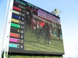 Santa Anita 2008: infield big screen