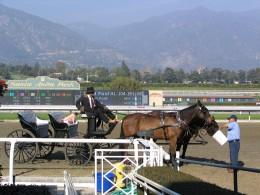 Santa Anita 2008: two horse surrey