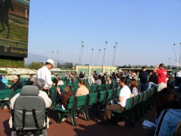 Santa Anita 2008: watching race on infield big screen