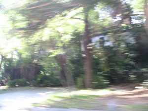 Sunset Boulevard - Part-Fifteen: driving through Bel-Air