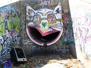 Up LA River Part 1: cat graffti