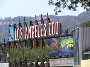 Up LA River Part 4: Los Angeles Zoo