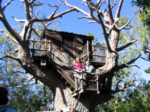 Disneyland and California Adventure Part 6: treehouse