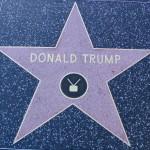 Donald Trump Star