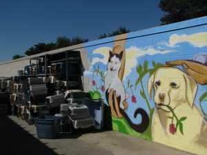 Burbank Animal Shelter: dog mural & carriers