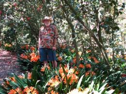 Descanso Gardens: John Varley, Clivia miniata
