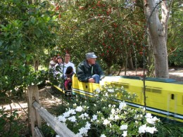 Descanso Gardens: train