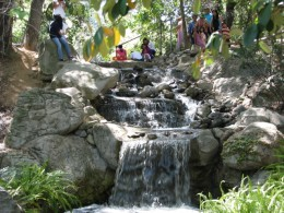 Descanso Gardens: waterfalls