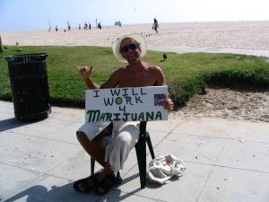 Work for Weed on Venice Beach