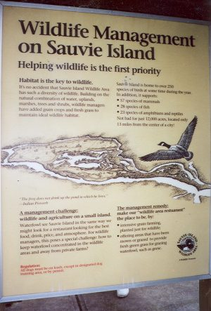 Wildlife Management on Sauvie Island