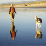 reflections woman walking dog
