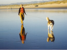 reflections woman walking dog