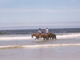 riding horses in surf